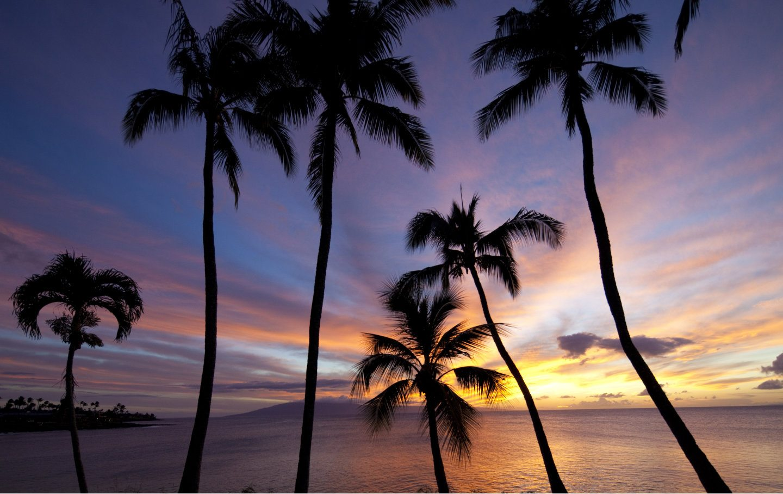 Sunset View at Napili Bay, Maui, Hawaii