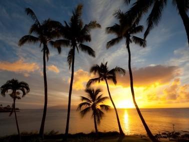 Golden Sunset on the Bay
